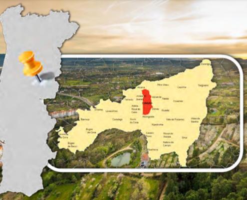Portugese wijngaard - Noordoost Portugal